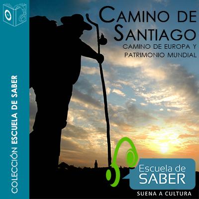 Audiolibro Camino de Santiago de Francisco Singul