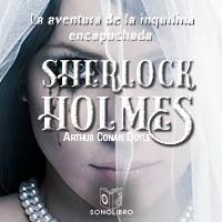 Audiolibro La aventura de la inquilina encapuchada