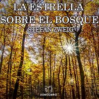 Audiolibro La estrella sobre el bosque
